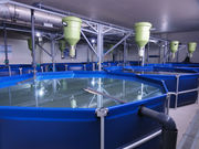 Рыбоводные Установки замкнутого водоснабжения