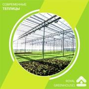 OSC Royal Greenhouses - Строительство Европейских теплиц